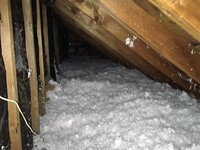 Attic Insulation Image